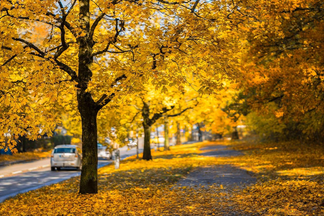 Takto budete jazdiť bezpečnejšie (nielen) v jesennom období!